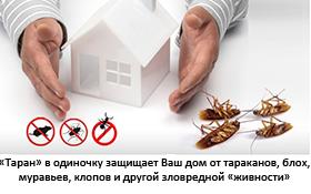 Таран в одиночку защищает Ваш дом от тараканов, блох, муравьев, клопов и другой зловредной живности